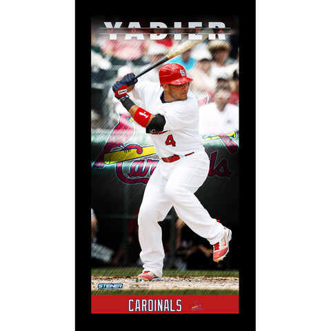 Yadier Molina St. Louis Cardinals Player Profile Wall Art 9.5x19 Framed Photo - Steiner Sports - Dropship Direct Wholesale