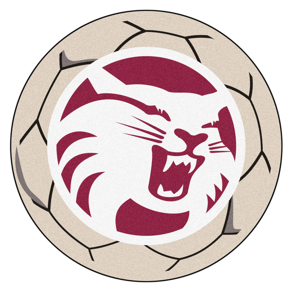 Cal State - Chico Soccer Ball - FANMATS - Dropship Direct Wholesale