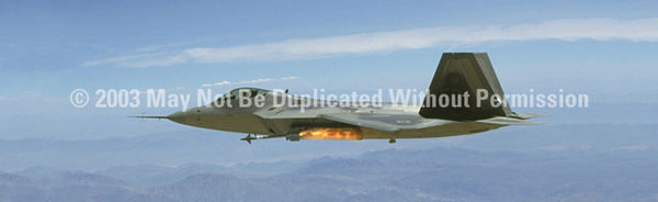 Window Graphic - 20x65 F/A-22 Raptor - ClearVue Graphics - Dropship Direct Wholesale