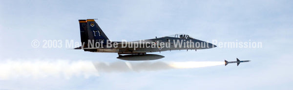 Window Graphic - 20x65 F-15 Eagle - ClearVue Graphics - Dropship Direct Wholesale