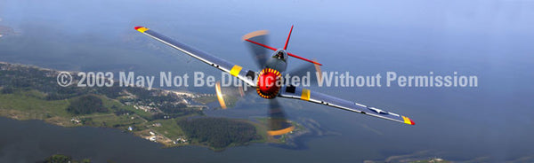 Window Graphic - 16x54 P-51 Mustang - ClearVue Graphics - Dropship Direct Wholesale