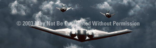 Window Graphic - 20x65 Stealth Squadron - ClearVue Graphics - Dropship Direct Wholesale