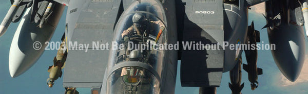 Window Graphic - 16x54 Strike Eagle Canopy 2 - ClearVue Graphics - Dropship Direct Wholesale