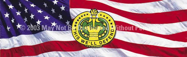 Window Graphic - 20x65 This We will Defend - ClearVue Graphics - Dropship Direct Wholesale