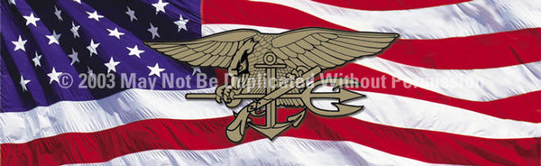 Window Graphic - 20x65 U.S. Navy Seals - ClearVue Graphics - Dropship Direct Wholesale