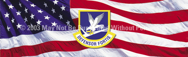 Window Graphic - 16x54 Defensor Fortis - ClearVue Graphics - Dropship Direct Wholesale