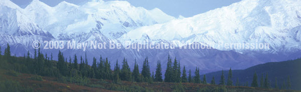 Window Graphic - 16x54 Mountains - ClearVue Graphics - Dropship Direct Wholesale