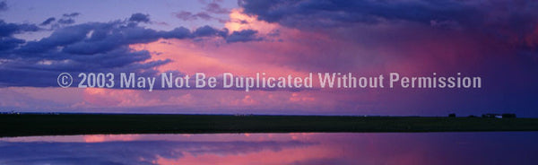 Window Graphic - 20x65 Pink Sunset - ClearVue Graphics - Dropship Direct Wholesale