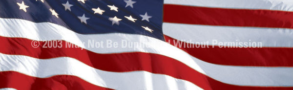 Window Graphic - 20x65 US Flag 1 - ClearVue Graphics - Dropship Direct Wholesale