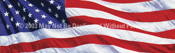 Window Graphic - 16x54 US Flag 2 - ClearVue Graphics - Dropship Direct Wholesale