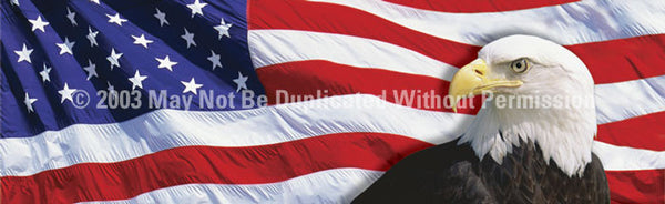 Window Graphic - 20x65 US Flag 2 with Eagle - ClearVue Graphics - Dropship Direct Wholesale