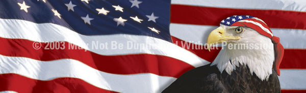Window Graphic - 16x54 US Flag 1 with Eagle & Bandana - ClearVue Graphics - Dropship Direct Wholesale