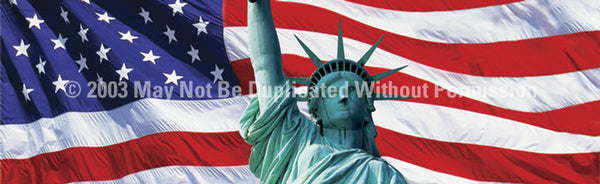 Window Graphic - 16x54 US Flag 2 with Lady Liberty - ClearVue Graphics - Dropship Direct Wholesale