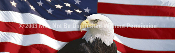 Window Graphic - 16x54 US Flag 1 with Eagle Centered - ClearVue Graphics - Dropship Direct Wholesale