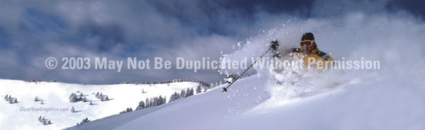Window Graphic - 16x54 Skiing is Believing - ClearVue Graphics - Dropship Direct Wholesale