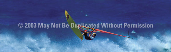 Window Graphic - 20x65 Sailboard Flying High - ClearVue Graphics - Dropship Direct Wholesale
