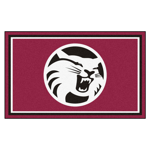 Cal State - Chico Rug 4x6 - FANMATS - Dropship Direct Wholesale