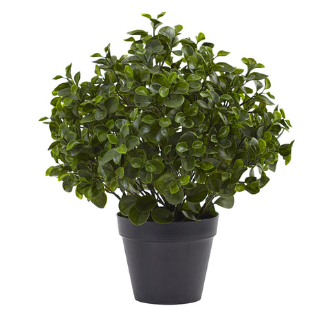23in Peperomia Plant UV Resistant (Indoor/Outdoor) - Nearly Natural - Dropship Direct Wholesale