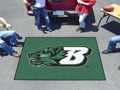 Binghamton University Tailgater Rug 6072 - FANMATS - Dropship Direct Wholesale