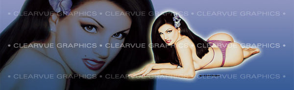 Window Graphic - 20x65 Pin-up Angelie - ClearVue Graphics - Dropship Direct Wholesale