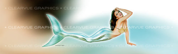 Window Graphic - 20x65 Pin-up Linda - ClearVue Graphics - Dropship Direct Wholesale