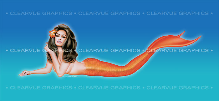 ClearVue Graphics Model# PIN-009-30-65