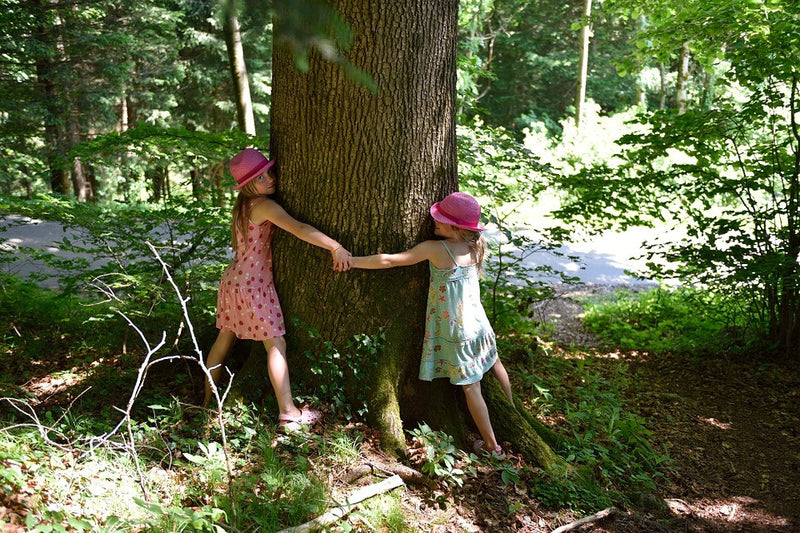 Teach your child to care for Nature