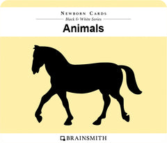 Animals Infant Cards