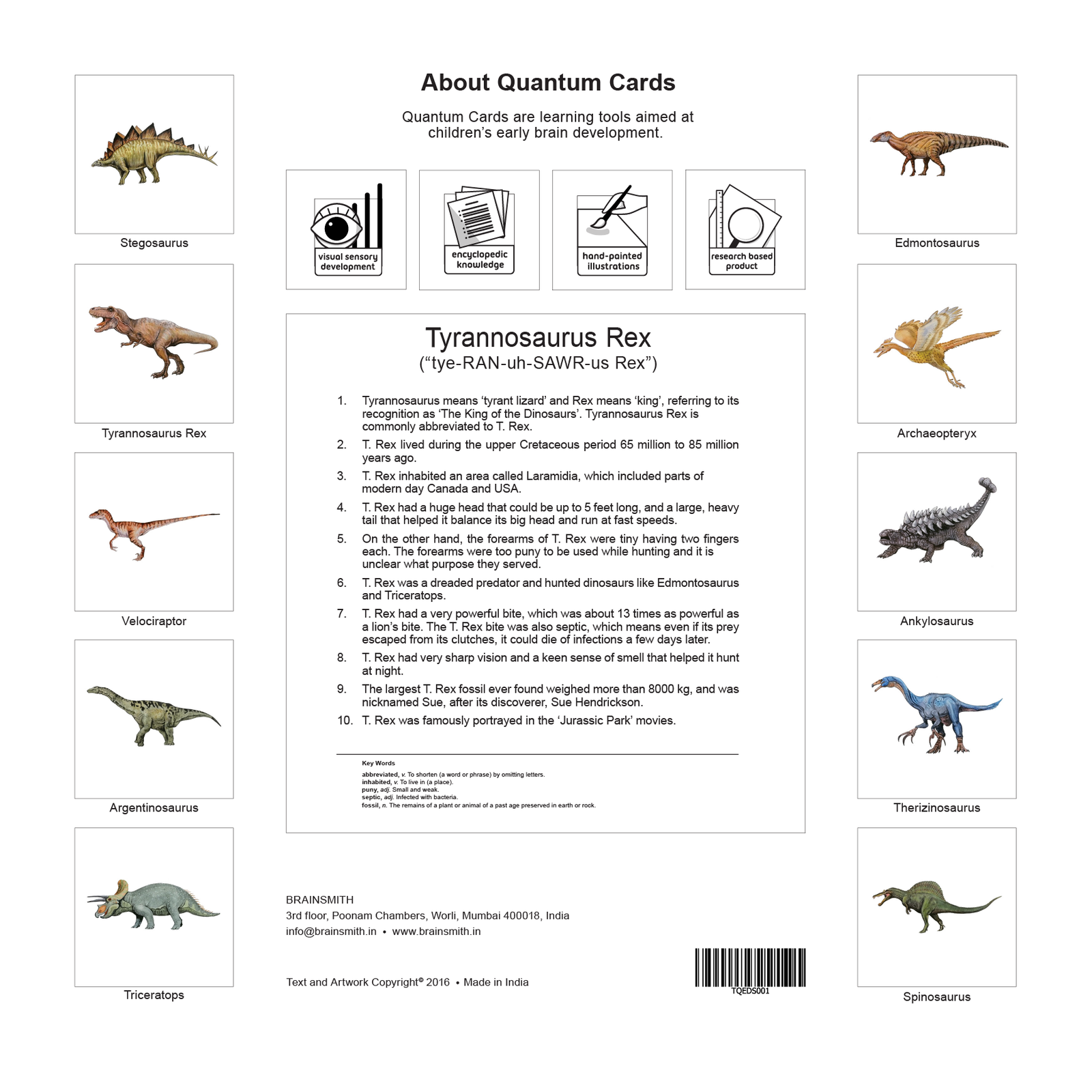 Dinosaurs Flashcards for Kids