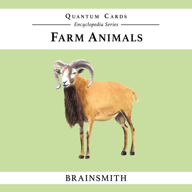 Farm Animals Flashcards for Kids