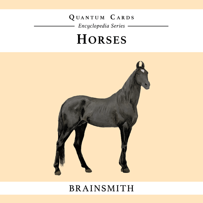 Horses Flashcards for Kids, Horses