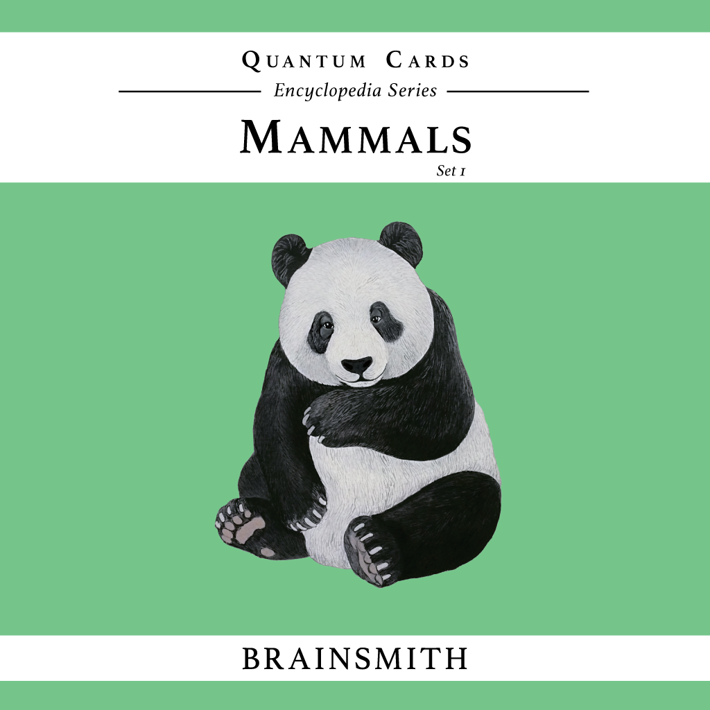 Mammals Flashcards for kids, Animals Flashcards