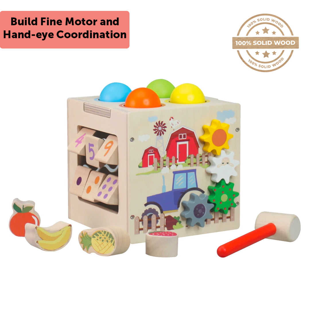Multi-Functional Activity Box