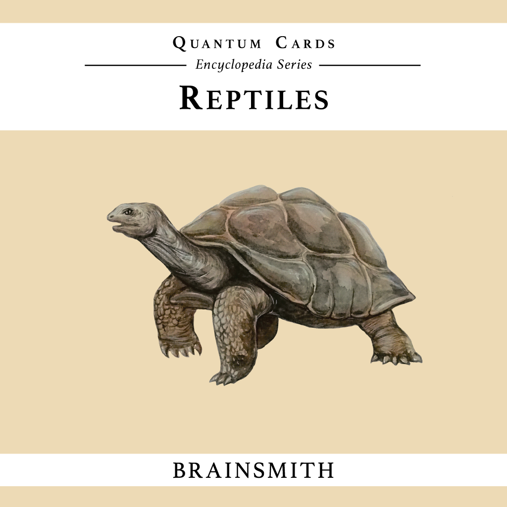 Reptiles Flashcards for Kids