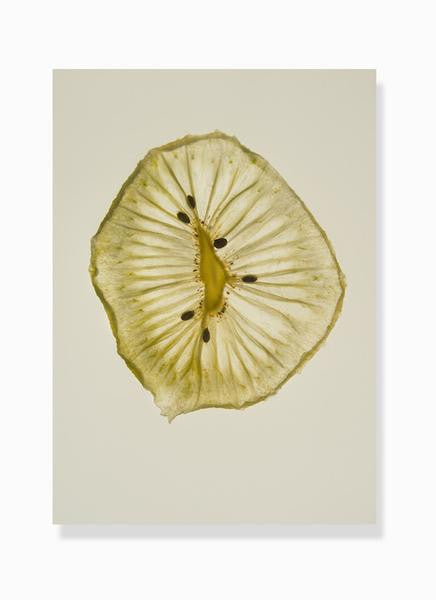 dehydrated kiwi print by Frema