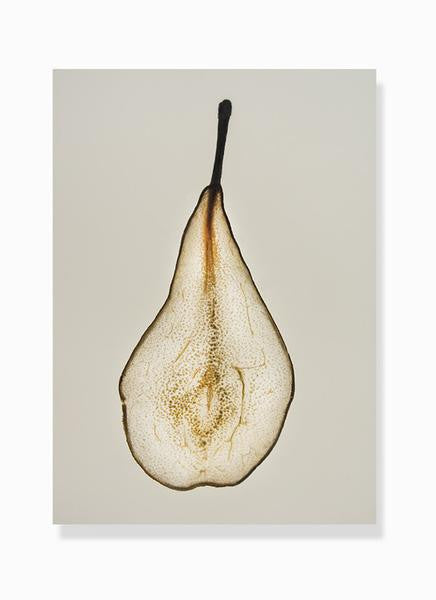dehydrated pear print by Frema