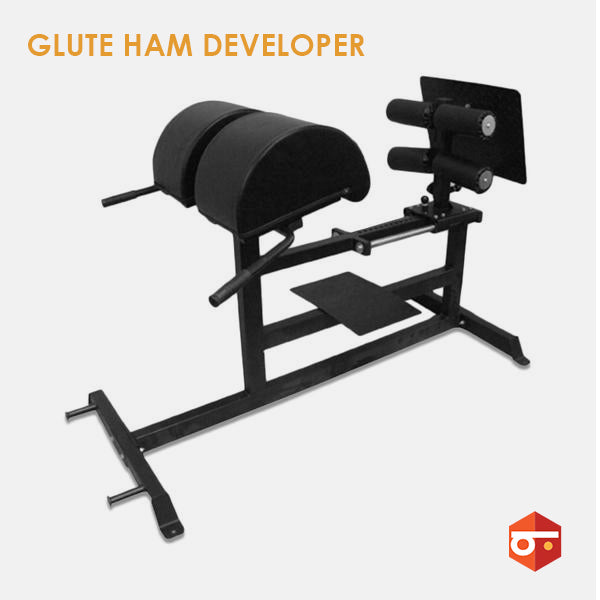 New Glute-Ham Developer(GHD)