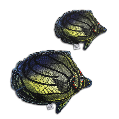 Butterfly Fish Multi-Coloured - Shaped Cushion - Kristjana S Williams Studio