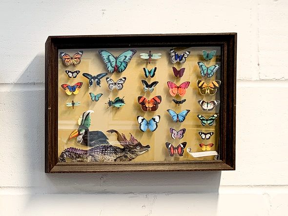 Hero Crocodile & Tucan Specimen Tray - Original 2018 - Kristjana S Williams Studio
