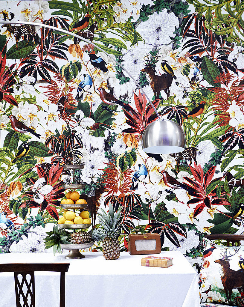 House Plant Wallpaper