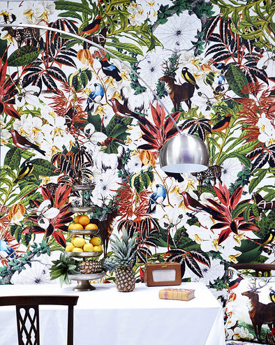 House Plant Wallpaper - Kristjana S Williams Studio
