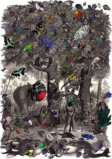 Ink Forest - Art Print - Kristjana S Williams Studio
