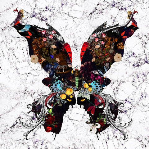 Oil Butterfly on marble wall art print by artist Kristjana S Williams