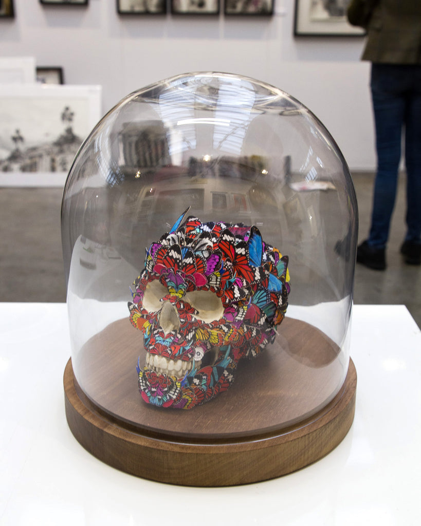 Skull sculpture in a glass dome Original artwork by artist Kristjana S Williams
