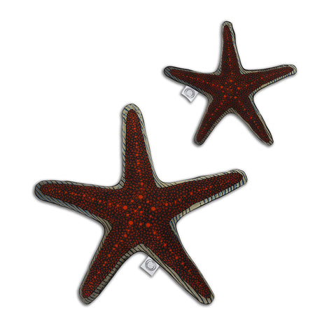 Spotted Sea Star - Shaped Cushion - Kristjana S Williams Studio