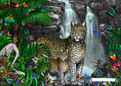 Jaguar Panthera art print from Wonder Garden children's book by artist Kristjana S Williams
