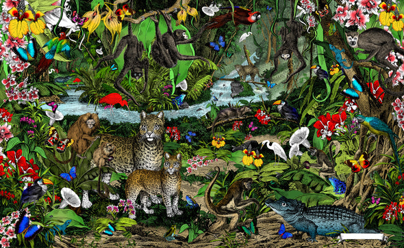 The Amazon Rain Forest - World's Zoological Jewel - Art Print - Kristjana S Williams Studio