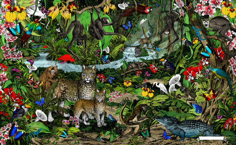 Amazon Rain Forest art print from Wonder Garden children's book by artist Kristjana S Williams