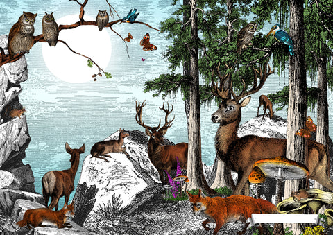Black forest Deer art print from Wonder Garden children's book by artist Kristjana S Williams