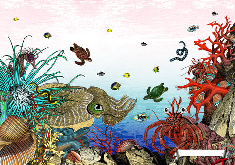 The Great Barrier Reef - Giant Cuttlefish & Hermit Crab - Art Print - Kristjana S Williams Studio